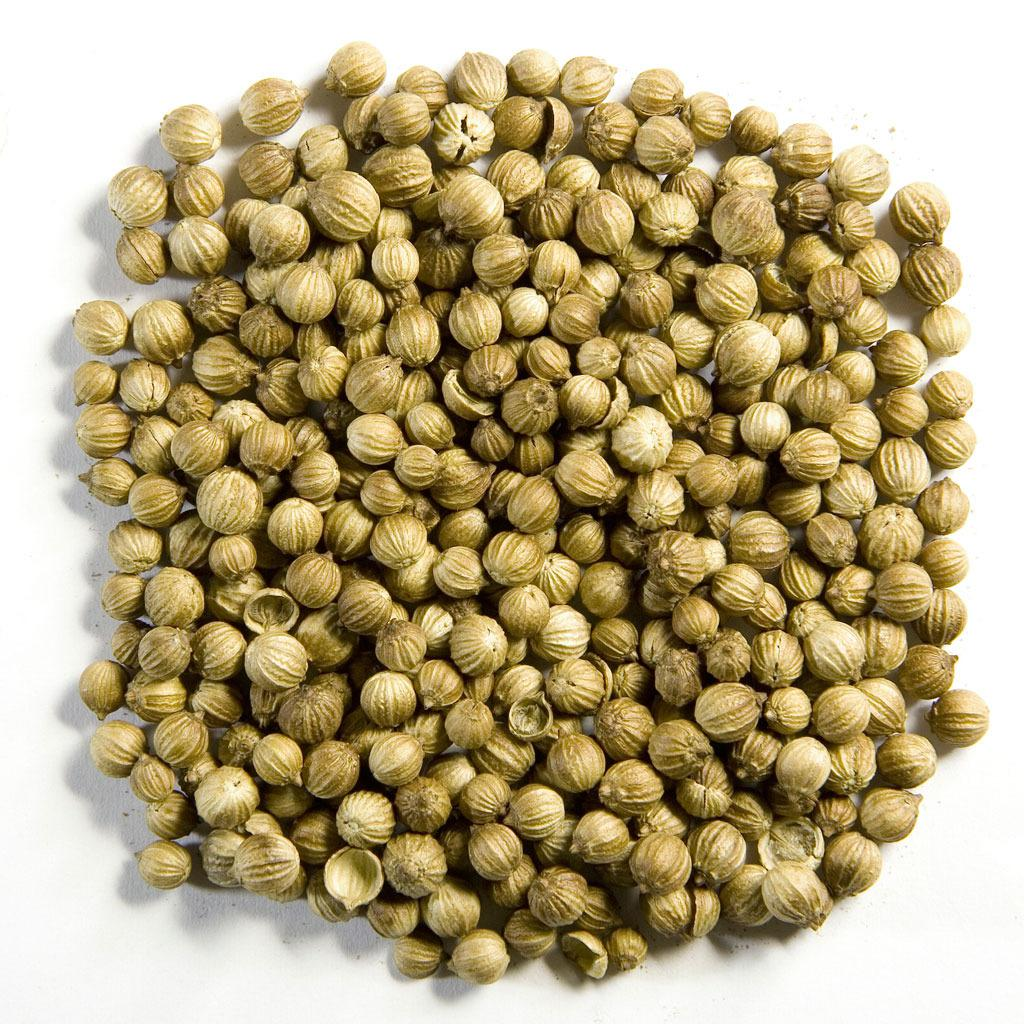 Coriander Seeds Exporter from Jaipur