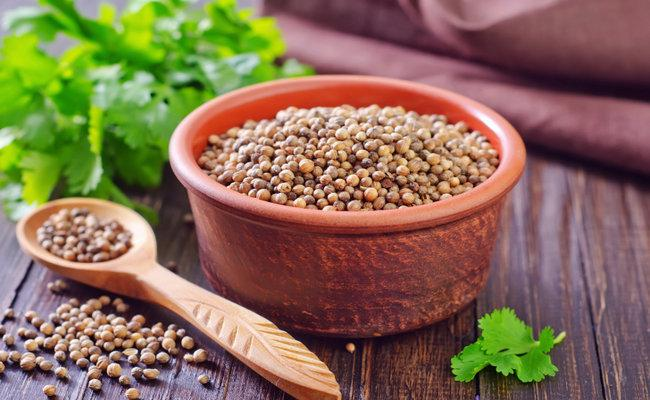 Coriander Seed Manufacturer from Surat