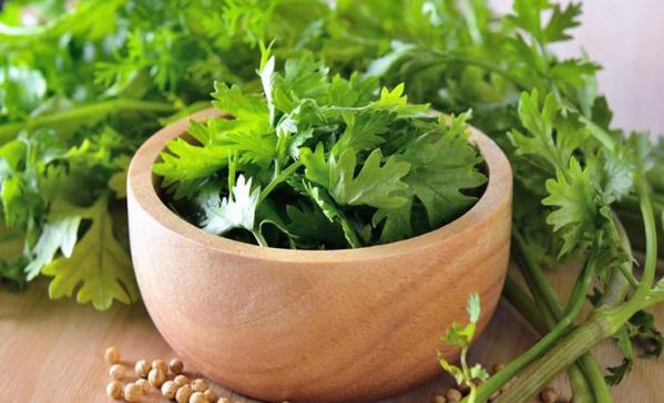 coriander prices in south africa & kenya & russia & nepal & sri lanka & india